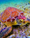 2019 Turtle 5D DIY Cross Stitch Diamond Painting Kits UK NA0894