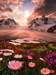 Hot Sale Natural Mountain Flower 5D Diy Diamond Diamond Painting Kits UK VM42103