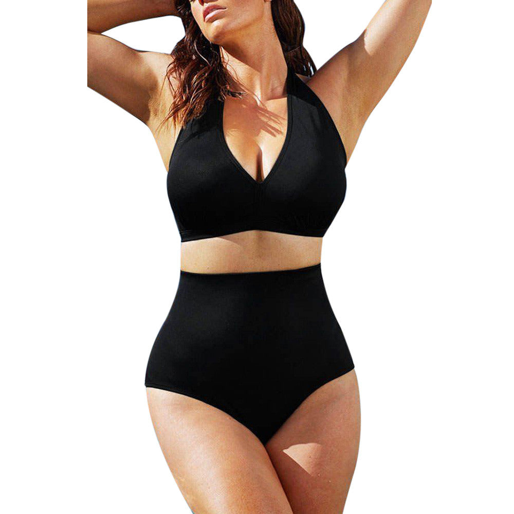 Pin Up Plus Size  Push Up High Waist Bikini