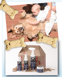 It's a Doggie Christmas - Gift Basket