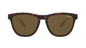 BEX Griz Sunglasses