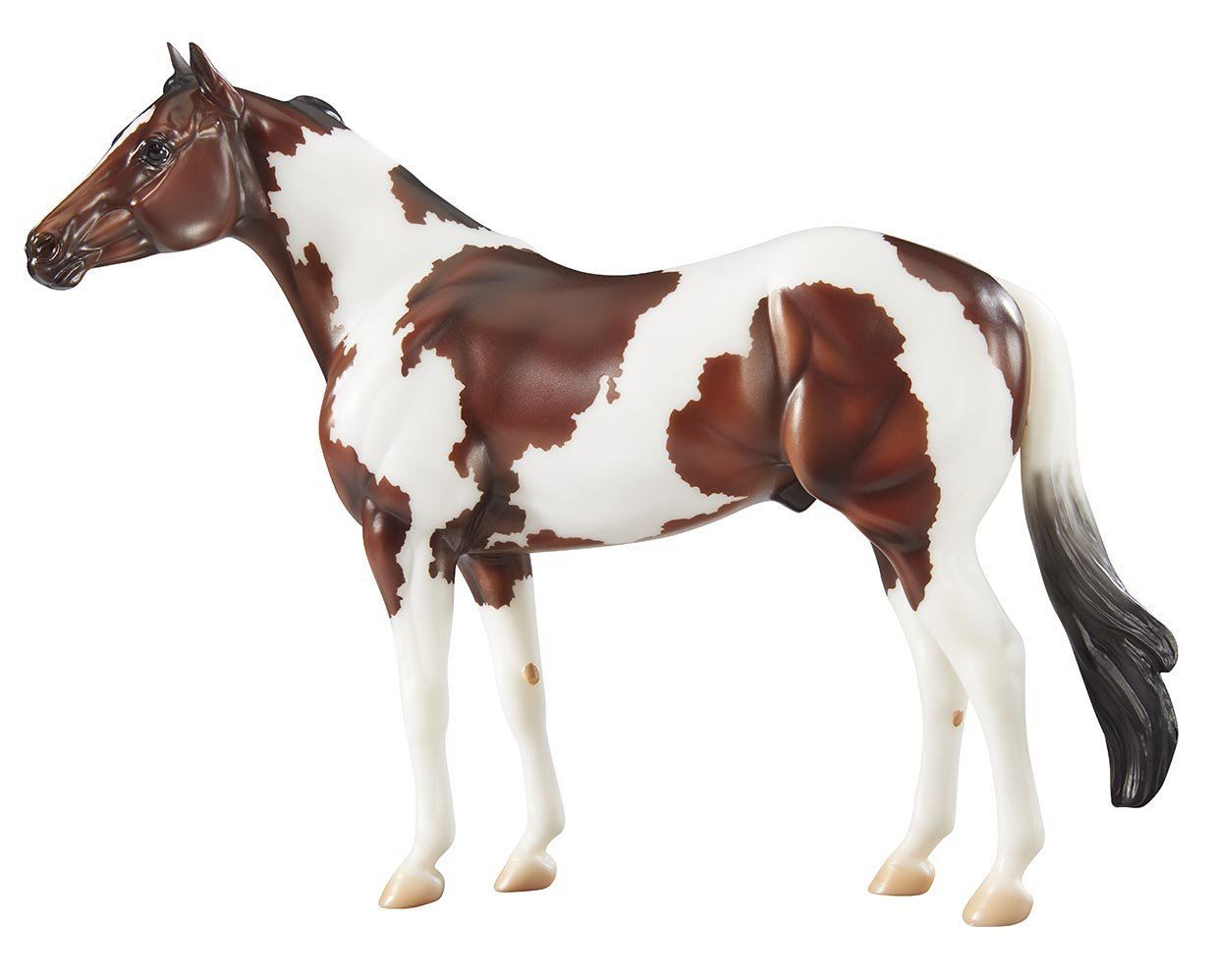 The Ideal Series-American Paint Horse