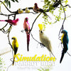 Simulation Parrot Bird Crafts Ornaments