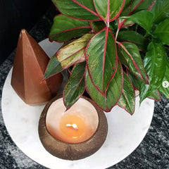 The Benefits of Coconut Candles