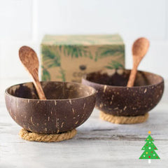 Tropical coconut bowl gift set