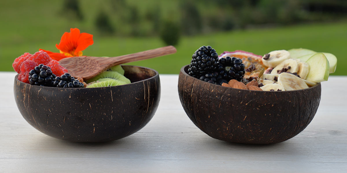 Coconut Bowls Outdoors