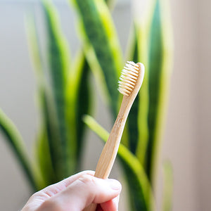 Adult sized bamboo toothbrushes