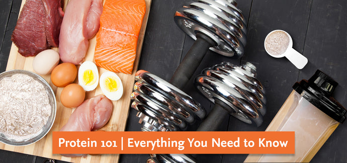 Protein 101 | Everything You Need to Know