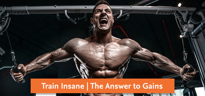 Train Insane | The answer to gains