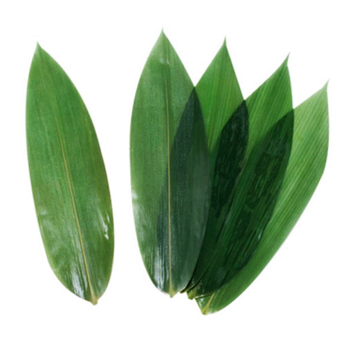 Vacuum-Packed Bamboo Leaves - 100 Pcs/Pkg (DI-FD-104-100-FDO)