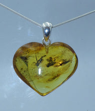 Load image into Gallery viewer, Insect in Baltic Amber Silver Pendant | Earthfound.co.uk