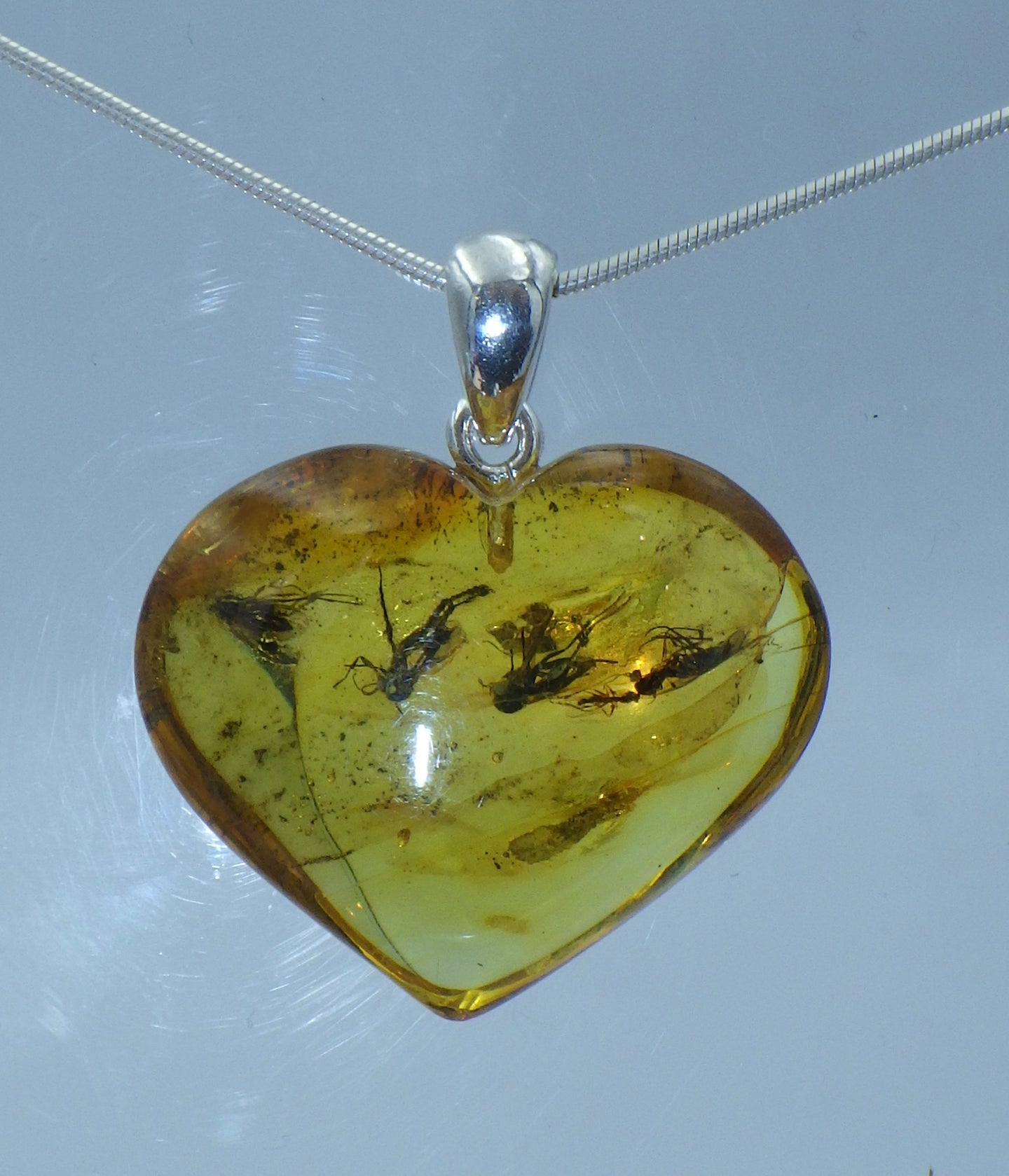 Insect in Baltic Amber Silver Pendant | Earthfound.co.uk