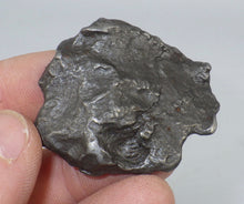 Load image into Gallery viewer, 53g Sikhote-Alin Iron Meteorite