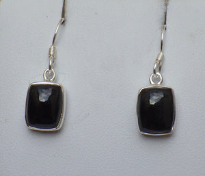 Rectangular Whitby Jet Silver Drop Earrings | Earthfound.co.uk