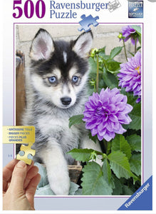 PUZZLE 500PC CUTE HUSKY