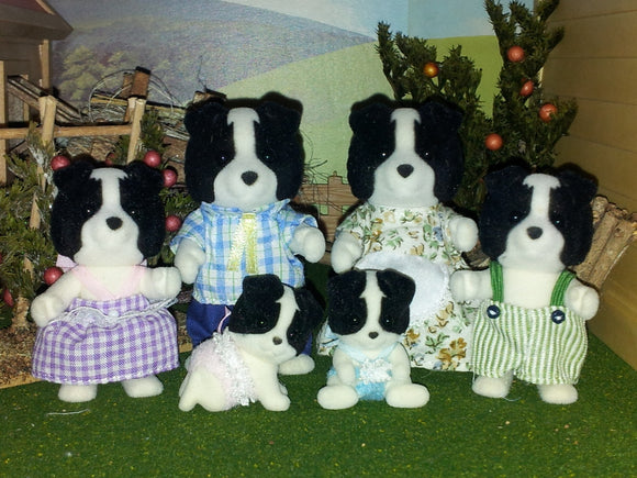 SYL/F BORDER COLLIE FAMILY W TWINS