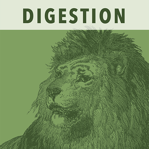 White Lion Digestion (Tummy Tamer) Wellness Tea