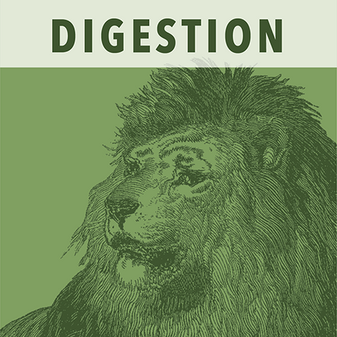 Image of White Lion Digestion (Tummy Tamer) Wellness Tea