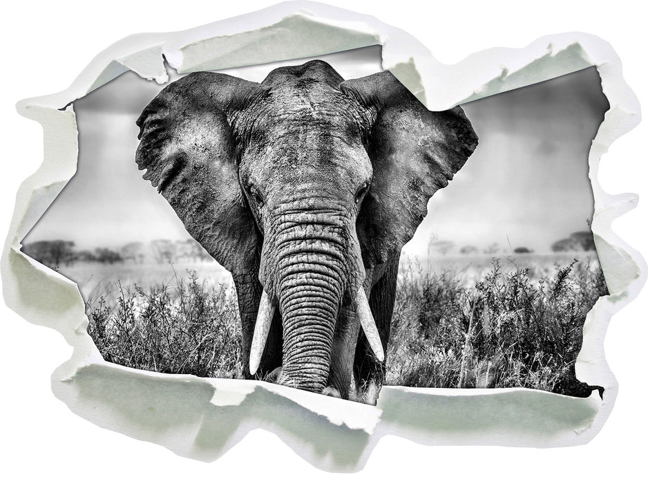 Imposanter Elefant 3D Wandtattoo Papier
