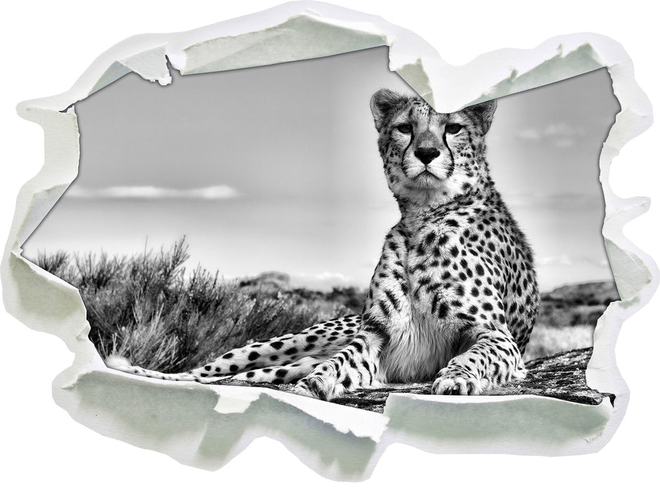 Gepard in Savanne B&W 3D Wandtattoo Papier