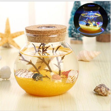 Novelty RGB LED Night Lamp Romantic Sea Fish Stone Ocean Bottle Night Lights For Children Baby Christmas Gift Bedroom Decoration