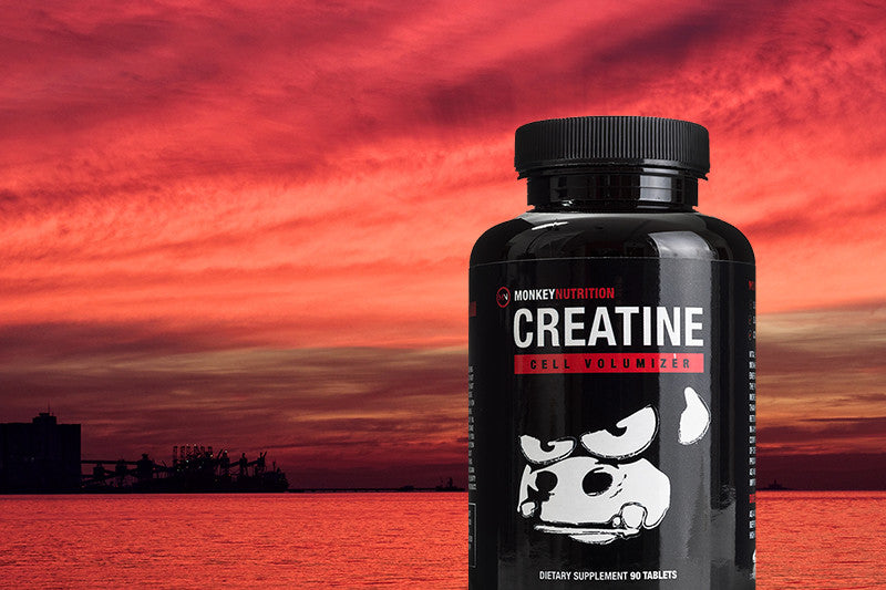 Product Focus – Monkey Creatine