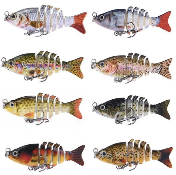 Now Choose any 5 small fish for only 24.99‼️ This Offer for Today Only