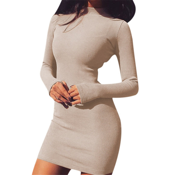 Solid Dress Women Body Con Turtleneck Super Warm