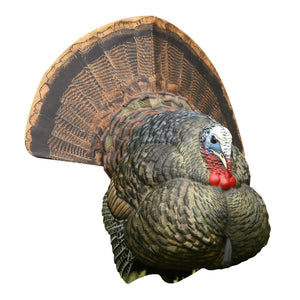 Avian-X Strutter Collapsible Decoy LCD Folding Tom Turkey Hunting Decoy