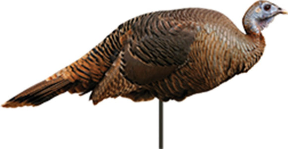 Montana Decoy Spring Fling Hen Turkey Decoy