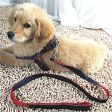 Nylon Rope Dog Leash Harness+Leash Sets