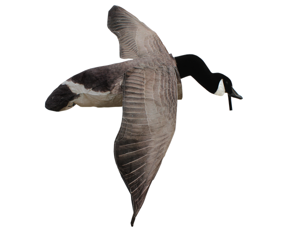 Deck Boss Flying Canada Goose Decoy