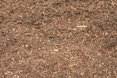 Tea Tree Mulch - 1m3 Bulka Bag