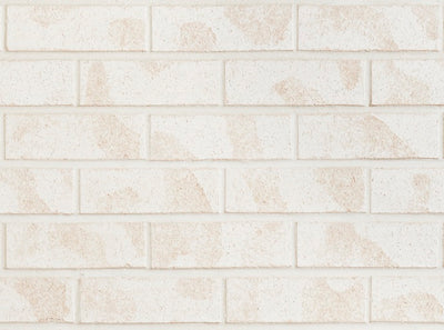 PGH BRICKS COASTAL HAMPTONS - WASHED WHITE (SOLD IN FULL PACKS OF 460 ONLY)