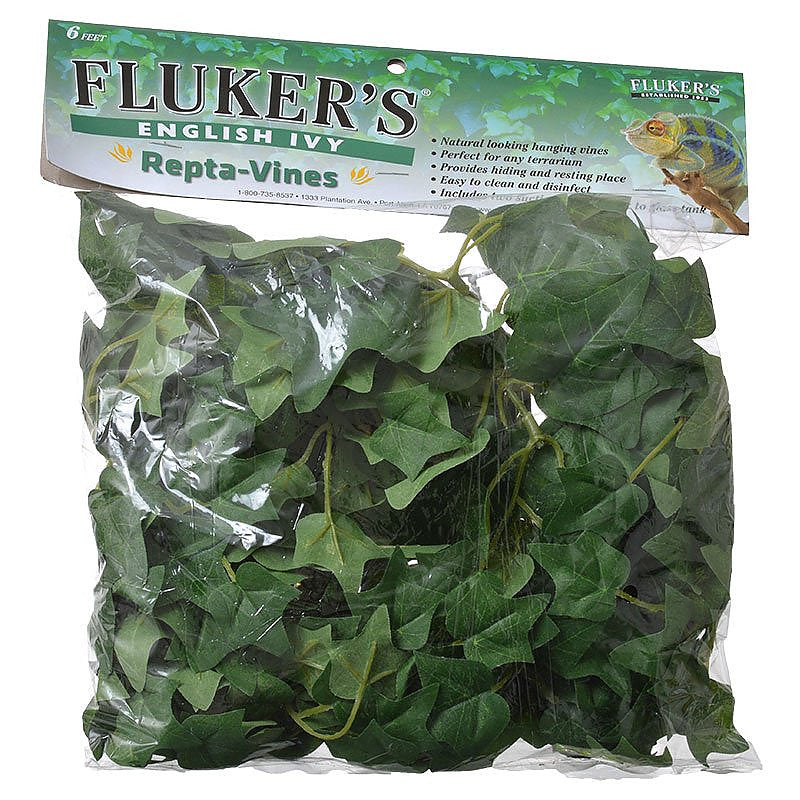 Flukers Repta Vine English Ivy - Northern Reptile Feeders