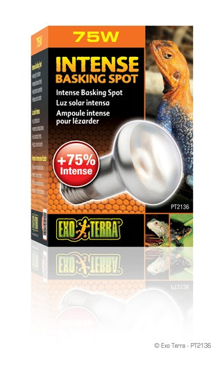 Exo Terra Intense Basking - Northern Reptile Feeders