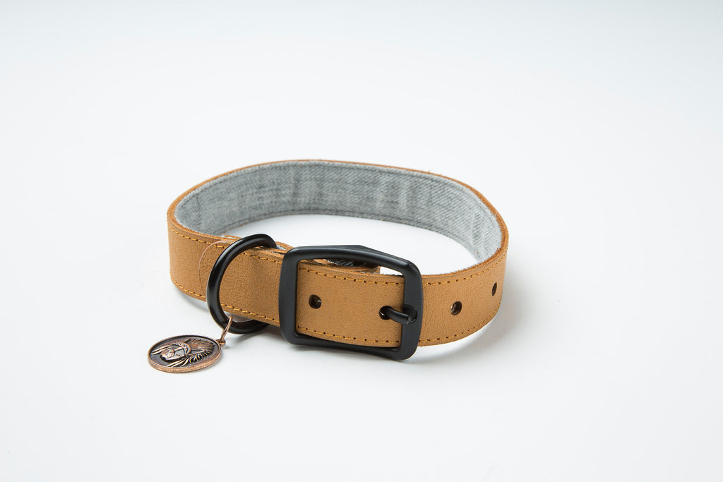 Nordic Collar | Hunter and Hound Supply Co
