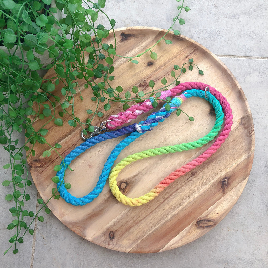 Interstellar Rainbow Leash | The Howling Zodiac