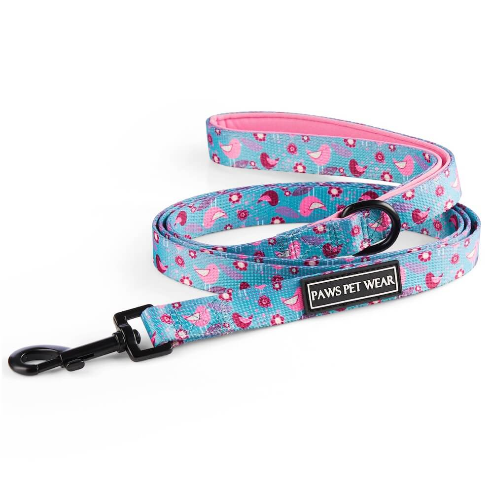 Sitting Pretty Leash | Paws Pet Wear