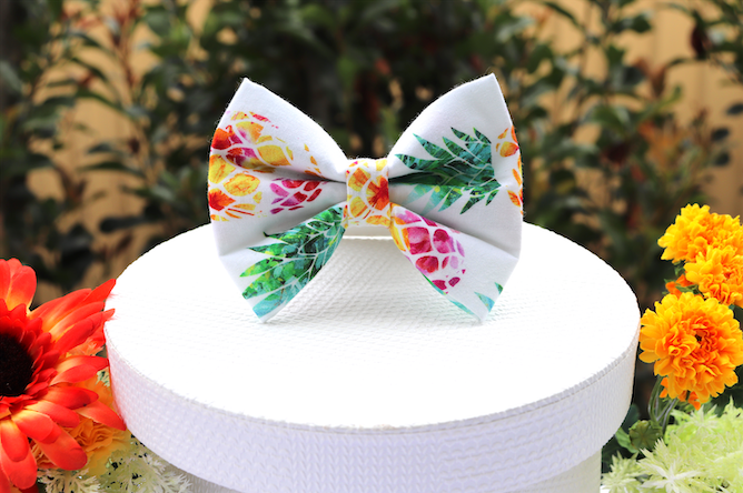 Pineapple Paradise - Pet Bow Tie | DapperDorable