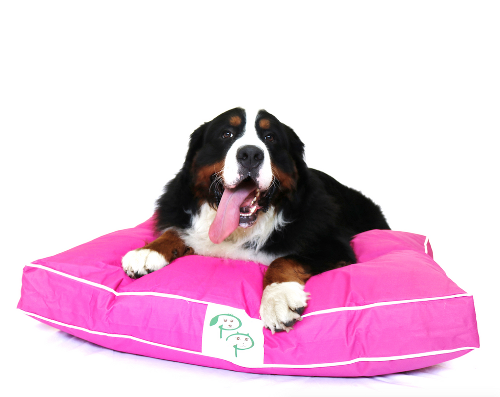 Pink Waterproof Designer Dog Bed | Pet Pouch