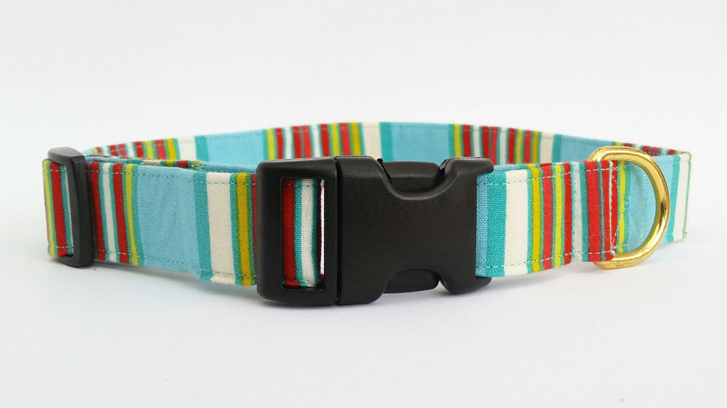 Beach Bum Collar | Big Big Bear