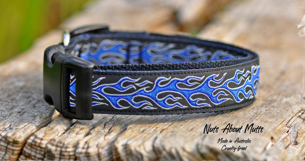 Hot Rod Ribbon Dog Collar | Nuts About Mutts