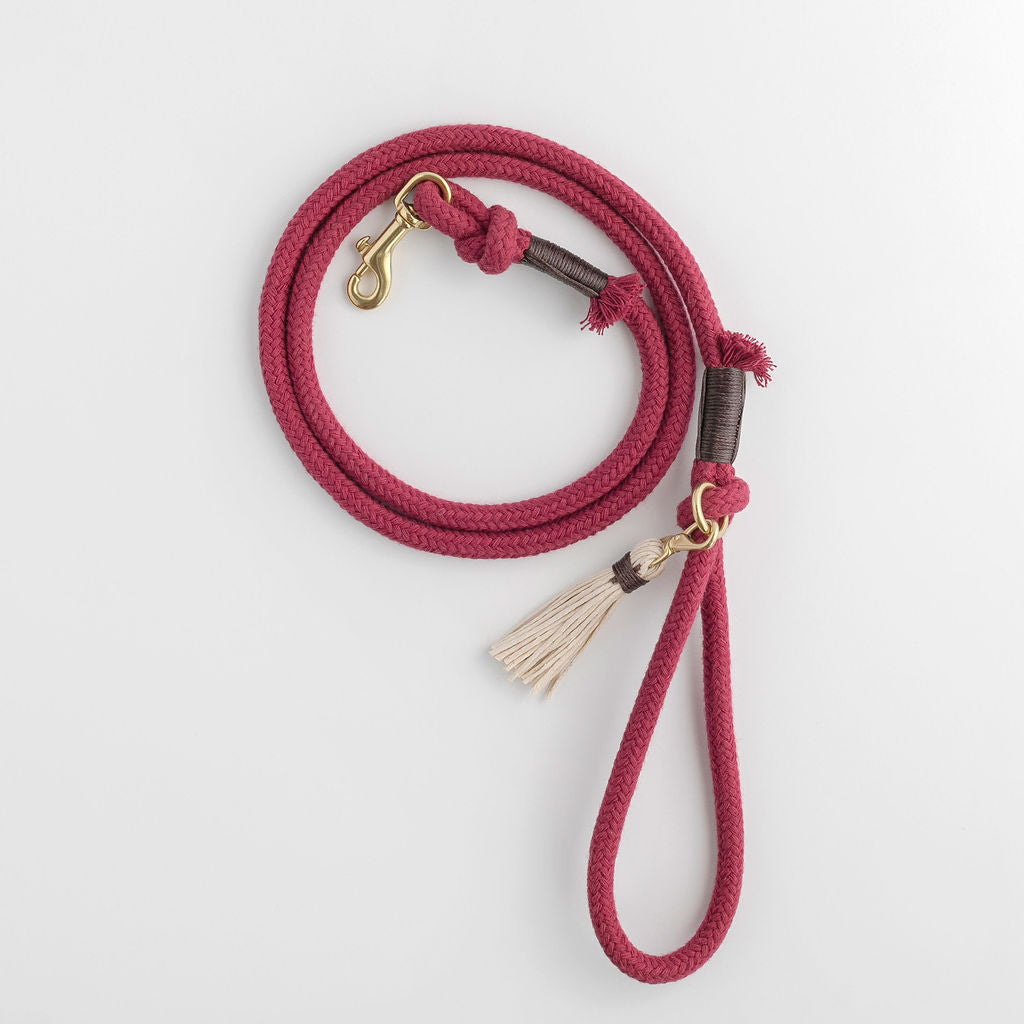 Plum Red Organic Cotton Rope Dog Leash | Animals in Charge