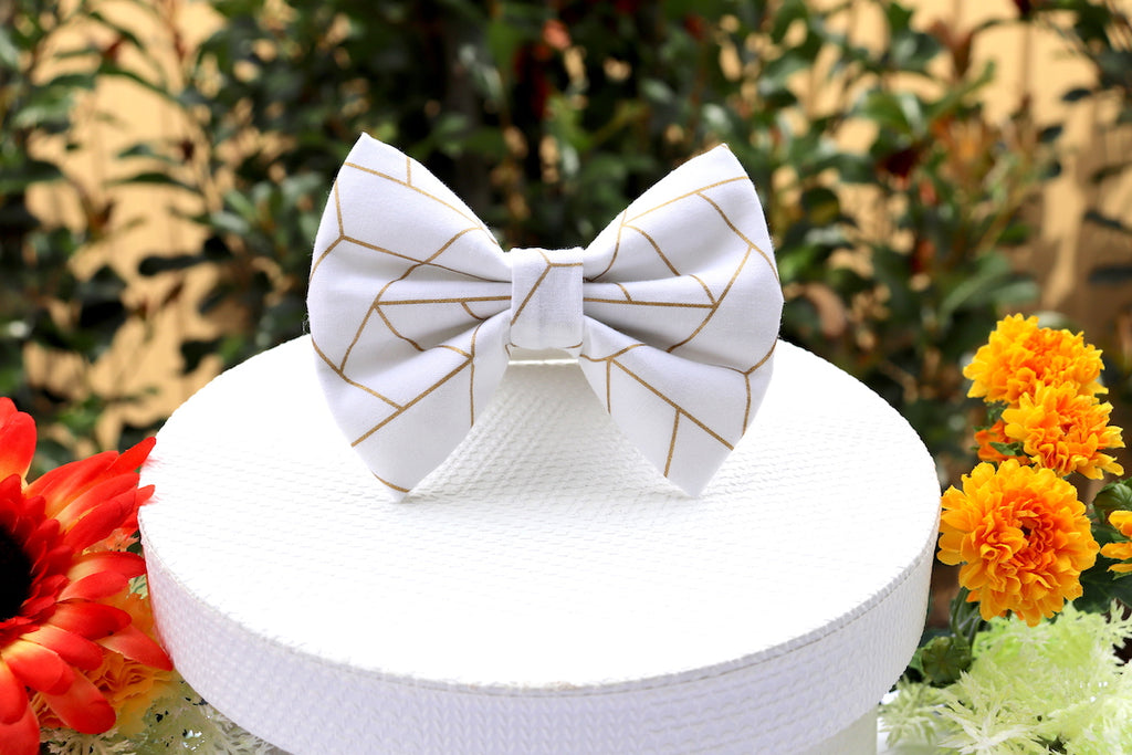 Geo Maze - Pet Bow Tie | DapperDorable