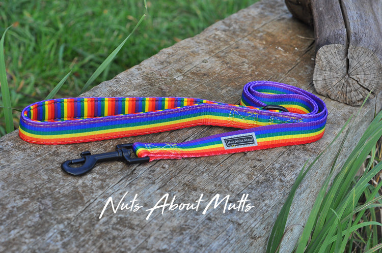 LGBT Pride Rainbow Narrow Dog Lead | Nuts About Mutts