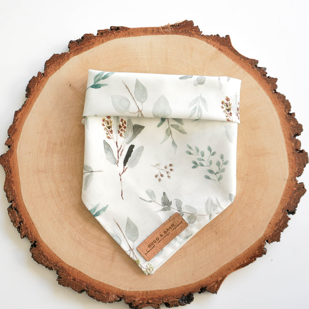 Eucalyptus Pet Bandana | Hugo & Dash