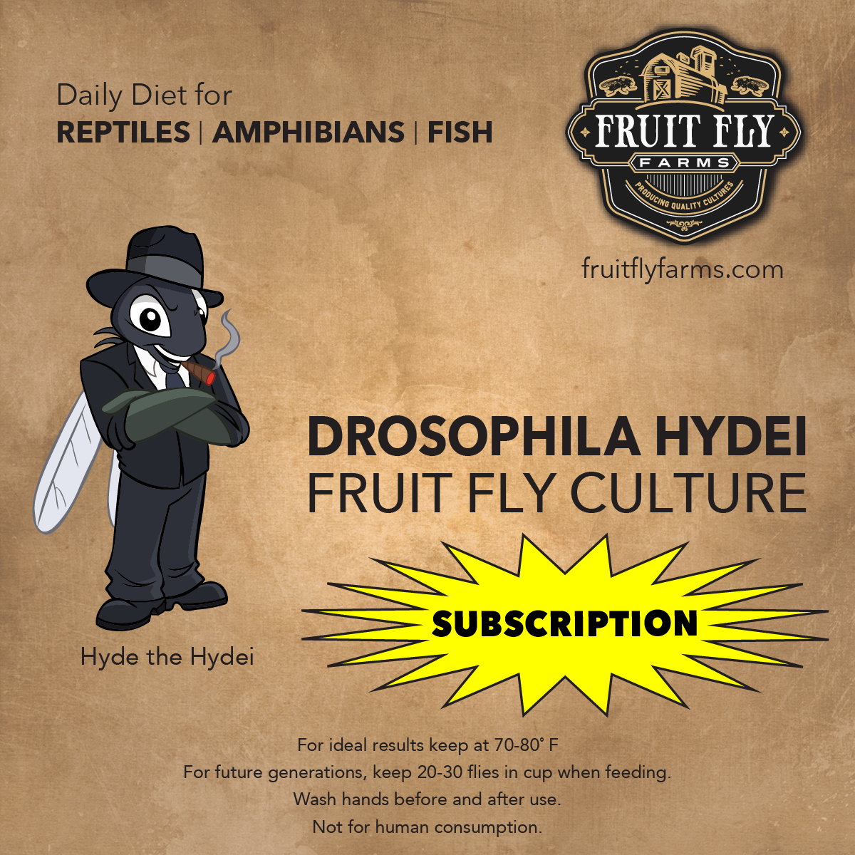 Flightless Hydei Fruit Fly Subscription