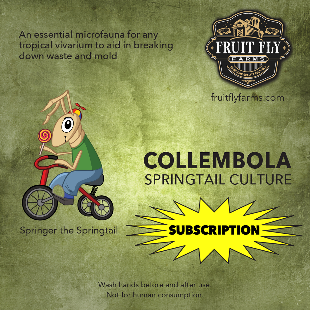 Springtail Culture Subscription