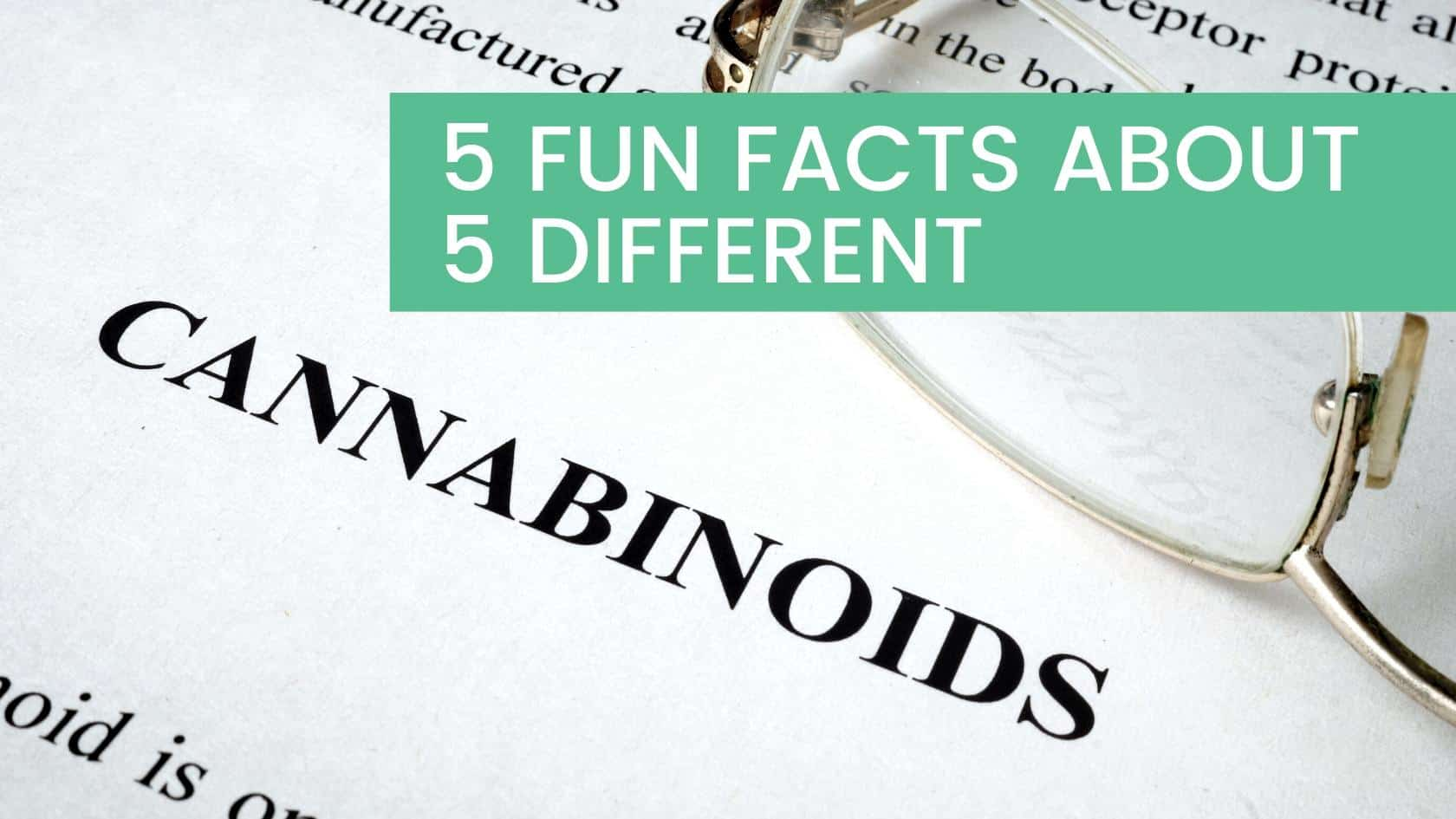 5 Fun Facts About 5 Different Cannabinoids